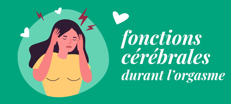 Fonctions cérabrales durant l'orgasme hormones plaisirs